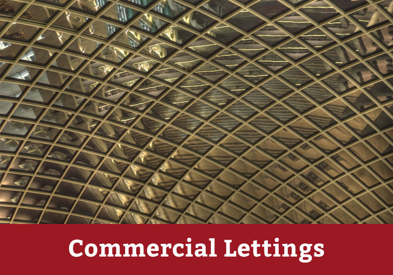 bristol commercial lettings