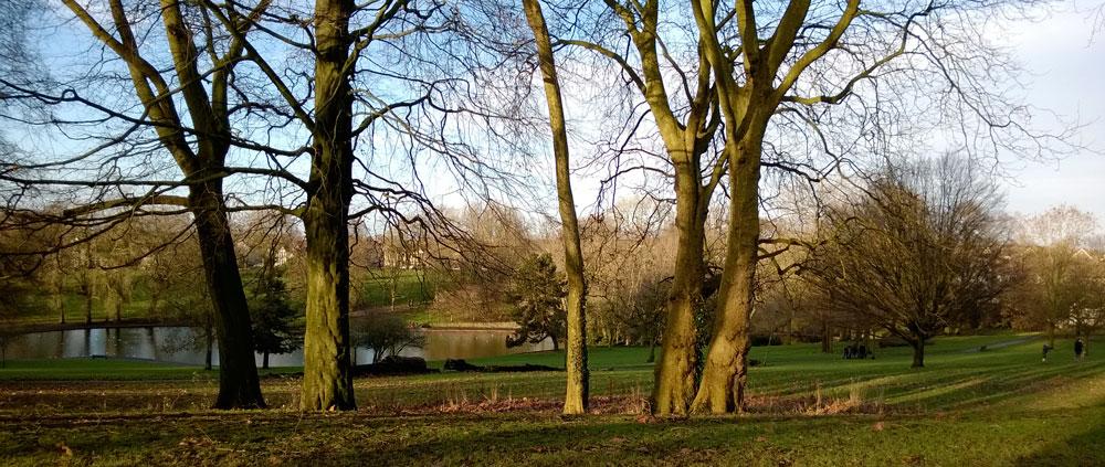 St George's Park